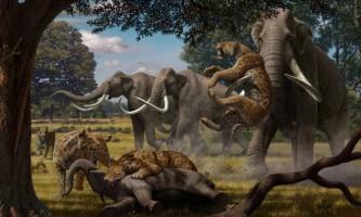 Мегахіщнікі давнину полювали на мегатравоядних