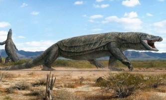 Мегаланія - колись існуюча на землі ящірка-гігант
