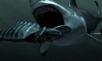 Мегалодон - викопна акула