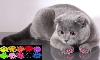 «М`які кігтики» для кішок!