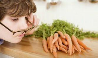 Морква користь, шкода і властивості продукту