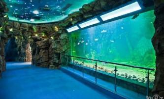 Московський океанаріум