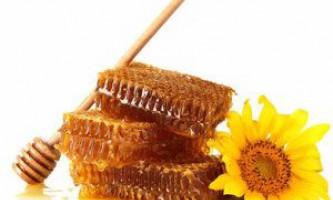 Чи можна їсти мед у стільниках, як дістати мед з сот будинку