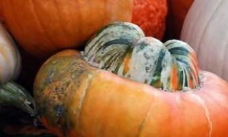 Мускатна гарбуз - найсолодший вітамін