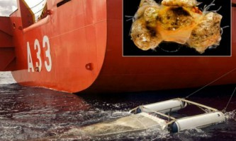 Сміття океану зникає невідомо куди