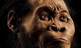 На дні південноафриканської печери знайшли новий вид древніх людей
