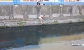 У керчи городянин врятував дельфіна
