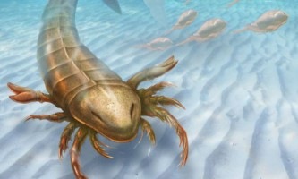 Знайдено останки найдавнішого гігантського морського скорпіона