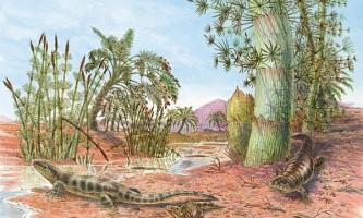 Знайдено сліди перших сухопутних тварин