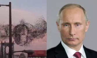 Небесний портрет путина зобразили птиці нью-йорка