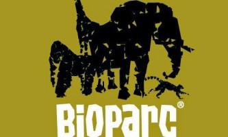 Незвичайний биопарк в валенсії