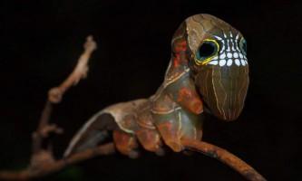Незвичайна гусениця-череп