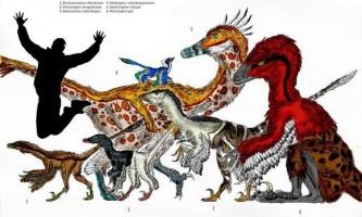 Нові динозаври з китаю і походження птахів