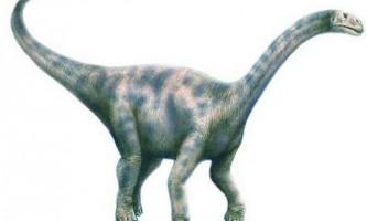 Нурозавр