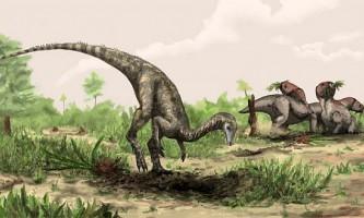 Nyasasaurus - кандидат на роль самого раннього динозавра