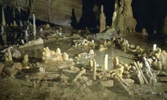 Виявлено таємничі підземні кільця, побудовані неандертальцями