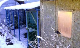Обігрів курника взимку