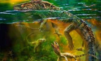 Зразок першої батьківського піклування знайдений в скам`янілостях крейдяного періоду