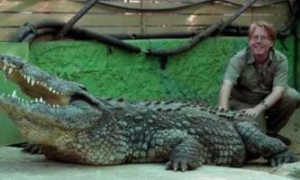 Мисливець на крокодилів зміг подружитися з найбільшим крокодилом європи
