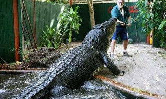Мисливець на рептилій, ось уже 30 років живе з найбільшим крокодилом в світі