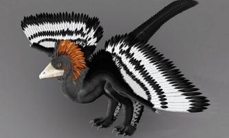 Забарвлення пернатих динозаврів, можливо, реконструйована не зовсім правильно