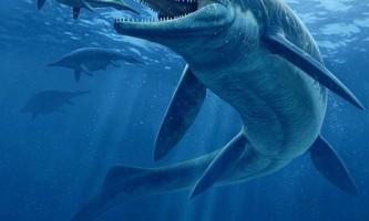 Описано новий вид стародавньої гігантської морської рептилії