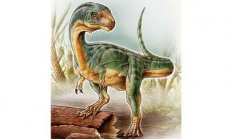 Описано вид травоїдних родичів тиранозаврів