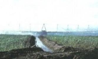 Зрошення пшениці