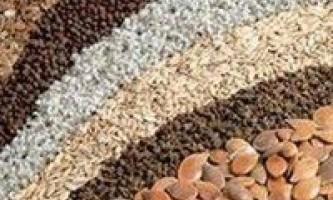 Основні показники якості насіннєвого матеріалу