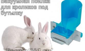 Основні вимоги до ніпельним і вакуумним поїлки для кроликів, робимо своїми руками