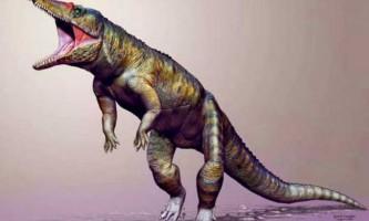 Останки крокодиломорфи знайшли вчені з сша