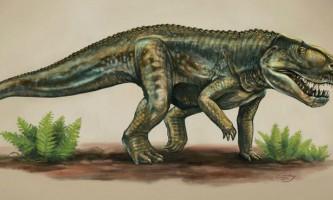 Відкрито новий вид доісторичних хижаків - предків крокодилів
