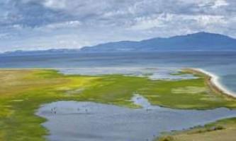 Озеро байкал перетворюється в болото через чужорідних водоростей, попереджають екологи
