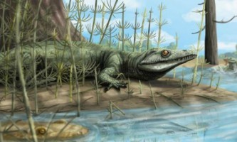 """Палеонтологи виявили в бразилии 250-миллионолетней """"парадоксальну"""" рептилію"""