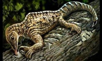 Палеонтологи відновили зовнішність загадкового доісторичної істоти