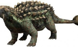 Панцирні динозаври: анкилозавр і нодоцефалозавр