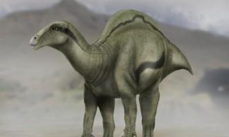 «Парус» на спині динозаврів допоміг їм вижити в мінливому кліматі
