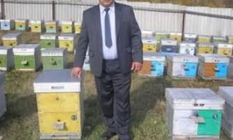 Бджільництво для чайників
