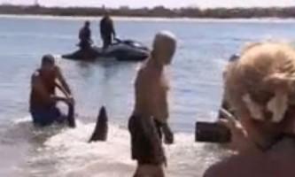 Пенсіонер врятував дітей від акули