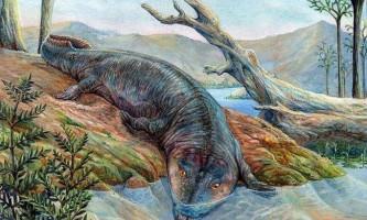 Перші наземні тварини рухалися по суші за допомогою хвоста