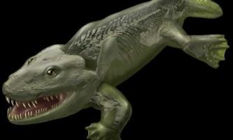 Перші сухопутні тварини швидше повзали, ніж ходили