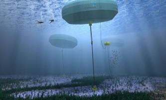 Перший в світі проект хвильової енергомережі