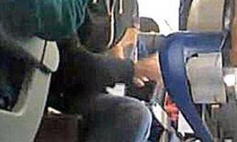 Пінгвін став пасажиром літака