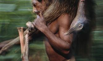 Плем`я короваї живе на деревах, не носить одяг і практикує канібалізм