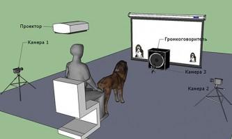 У гарчання собаки закодовані дані про її розмірах