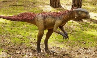 Під сходами будинку в китаї знайдені кістки і яйця динозавра