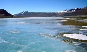 Під льодом антарктичного озера виду виявлено життя