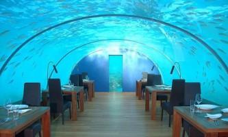 Підводний ресторан ithaa (ithaa undersea restaurant) на мальдівах