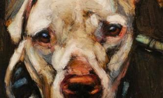 Портрети бездомних собак, засуджених до смерті