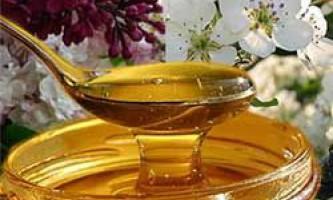 Корисні і лікувальні властивості травневого меду, протипоказання
